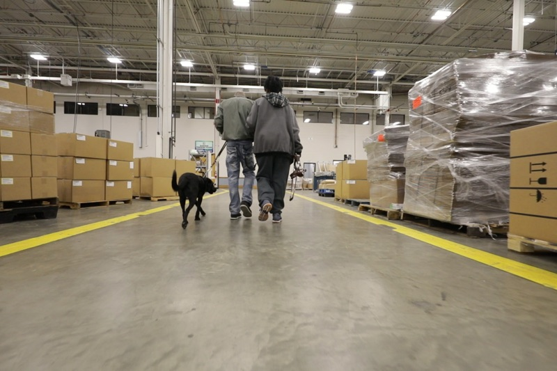 LCI employees walking with a seeing eye dog throughout the manufacturing facility